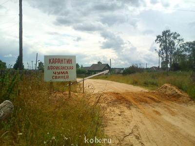 Африканская чума свиней - IMG_20120722_150811.jpg